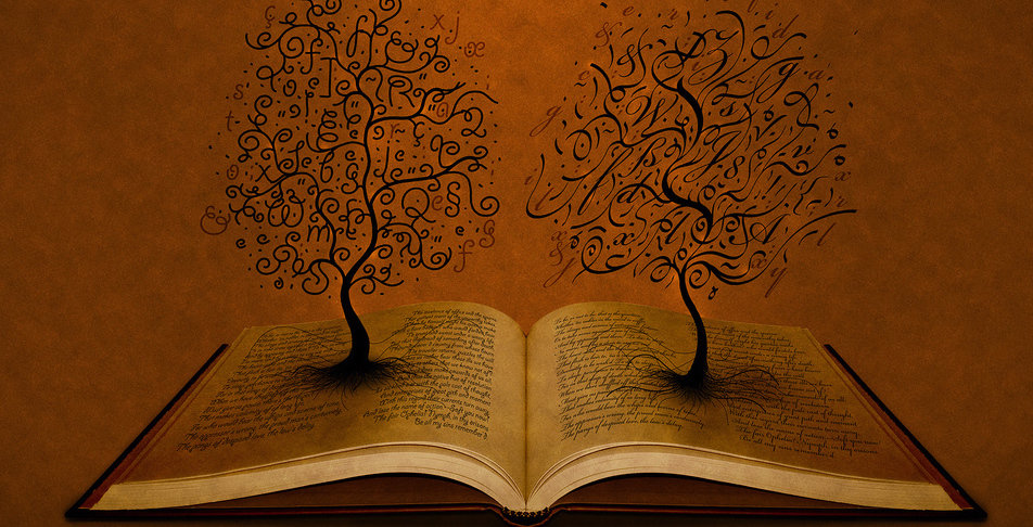 rsz books-on-the-brown-background-and-trees-backgrounds-wallpapers